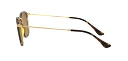 Ray-Ban - Ray-Ban Light Havana - Gold Classic B 15 Sunglasses (1)